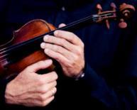 Schnecke Violine